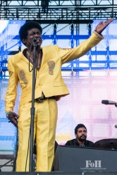 Charles Bradley performing at Wayhome Music & arts Festival - photo by Dawn Hamilton/@minismemories@minismemories