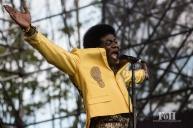 Charles Bradley performing at Wayhome Music & arts Festival - photo by Dawn Hamilton/@minismemories@minismemories